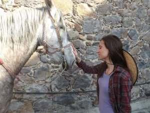 zerina horse